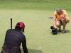 Golf ist kein Massensport in Thailand